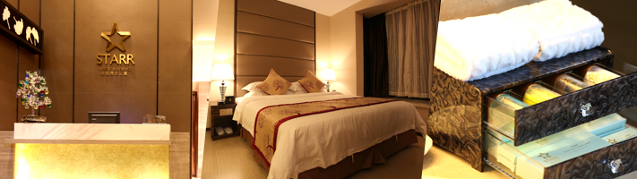 Hotels and Serviced Apartments